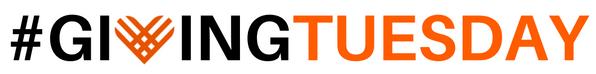 GT 10